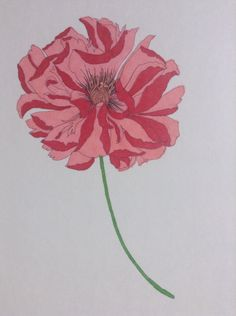 From Floribunda,mcoloured with Sharpies.