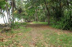 playa chiquita path   - Costa Rica