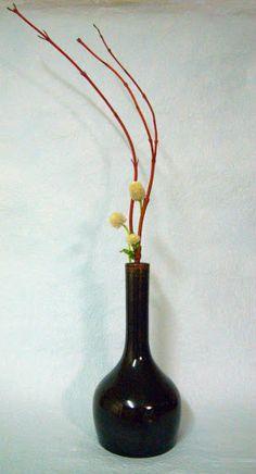Cornus alba and globe amaranth