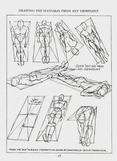 Human Figure Drawing Reference 1943 Andrew Loomis: Figure Drawing For All It's Worth Figure Drawing Tutorial, Male Figure Drawing, Sketches Tutorial, Figure Drawing Reference, Body Drawing, Anatomy Drawing, Art Reference Poses, Manga Drawing, Anatomy Reference