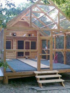 LOVE this amazing outdoor logged cabin aviary for tiels!!! #buildaviary #aviariesdiy #aviariesideas