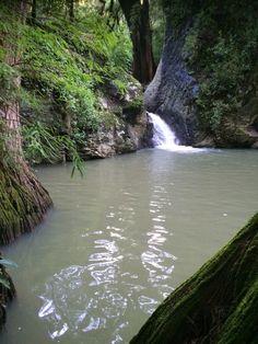 Poza en Parque dd Amatlan