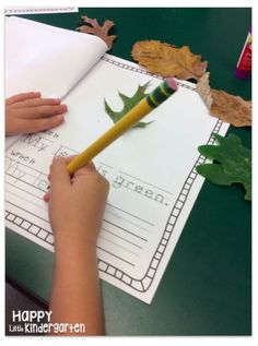 We're Going on a Leaf Hunt Activity Book! Phonics Activities, Writing Activities, Teaching Resources, Teaching Ideas, Leaf Book, Leaf Crafts, Kid Crafts, Thing 1, Author Studies