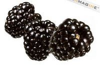 How to Get Seeds Out of Blackberries | eHow
