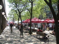 Pedestrian Plaza near St. Lawrence Market in Toronto, ON