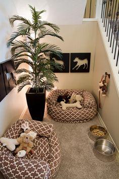 Pet corner, this is cute