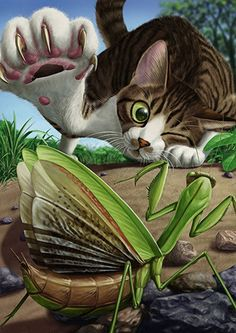 Artist: Matataku {contemporary feline cat with grasshopper foreshortening perspective illustration #loveart}