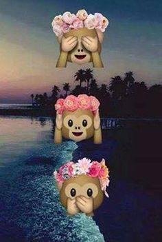 Cute Emoji Wallpapers Monkeys Cute Monkey Emoji Wit Flower Head Band Monkey Flower