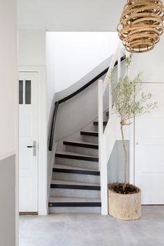 Easy Home Decor, House Stairs, Hallway Decorating, Stair Decor, Interior, Staircase Design, New Homes, Sweet Home, House Interior Decor