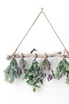 hanging herb gardens Learn how to dry your own herbs with this simple wooden herb drying rack. The perfect homemade drying rack for herbs from your summer garden harvest. Hanging Herb Gardens, Hanging Herbs, Hanging Flower Wall, Herb Drying Racks, Diy Herb Garden, Natural Home Decor, Growing Herbs, Easy Diy, Simple Diy