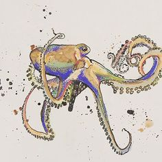 Colorful Inked Octopus, Pastel mixed media ink sketch, Giclee Ink Sketch