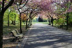 Josaphat park, Brussels