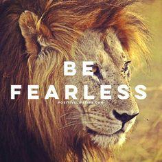 Like a Lion!