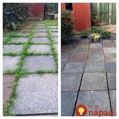 7 nezvyčajných spôsobov, ako využiť ocot v záhonoch a na záhrade: Záhradkari, toto si zapamätajte na celú sezónu! Weed Killer, Gladioli, Ikebana, Stepping Stones, Flora, Sidewalk, Patio, Outdoor Decor, Pure Products