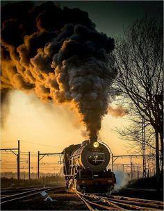 HRP steam power