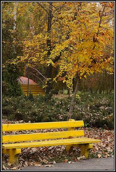 This photo from Arges, West is titled 'Awake'. Outdoor Furniture, Outdoor Decor, Cities, Europe, Park, Romania, Countries, Parks, Backyard Furniture