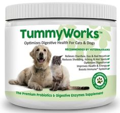 Probiotics for Dogs & Cats. Best Powder To Relieve Diarrhea, Yeast Infections, Itching, Skin Allergies & Bad Breath. Boosts Immunity. Added Digestive Enzymes Improve Digestion. Made in USA 160 Scoops, 2016 Amazon Hot New Releases Cats  #Pet-Supplies