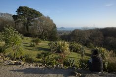 St Michaels Mount through the trees
