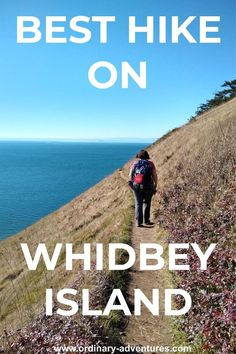 Where and when to find the best hike on Whidbey Island and one of the best in Washington state! A moderate mile hike with only a bit of elevation gain, hikers of all levels will enjoy this one! Whidbey Island Washington, Washington State, Washington Hiking, Best Hikes, Travel Usa, Columbia Travel, Oregon Travel, Beach Travel, Pacific Northwest