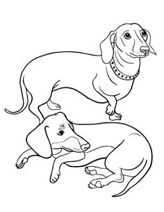 printable dachshund coloring page free pdf download at httpcoloringcafecom - Dachshund Coloring Pages Print