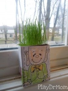The magic seeds worked! Growing leprechaun hair!