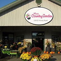 Find all your gardening needs at Minter Country Garden Store in Chilliwack, BC British Columbia, Canada, Gardening, Country, Building, Outdoor Decor, Store, Places, Beautiful