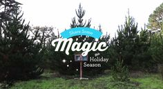 Share some magic this holiday season. Happy Holidays from Chronicle Books! #GiveBooks