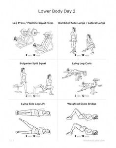 quadsfocused leg workout  lower body workout gym