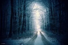 Road to light - The White Carpathians