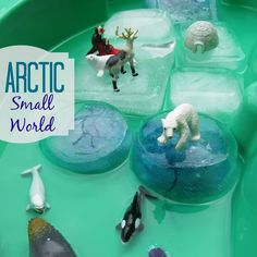 Arctic Small World Play: Learn about icebergs and glaciers, and animals that live in freezing temps.