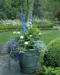 fabulous white garden & pots with  blue and white & silver