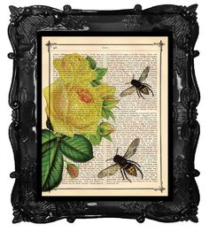 Antique Yellow Roses and Bumble Bee Print on a Antique 1883 Book Page