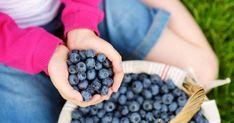Οι τροφές που βοηθούν στην αντιμετώπιση της άνοιας