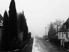 Der Nebel im Harz