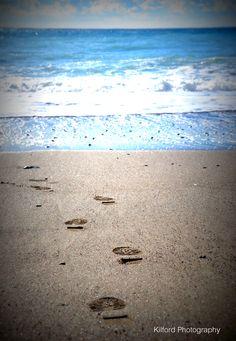 www.alidailyphoto.blogspot.co.uk