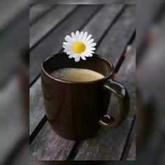 Günaydın mutlu huzurlu sabahlar - Tolga Sarıkaya - Google+