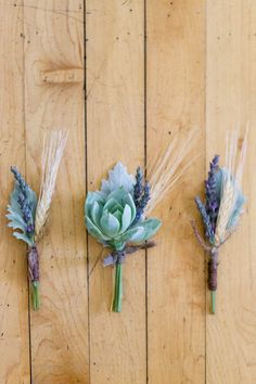 Succulent and Lavender Boutonnieres || but not lavender bc I don't like the smell of lavender