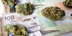 The 3 Best Marijuana Stocks To Invest In Right Now