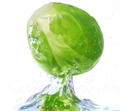 cabbage water