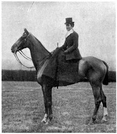 """From """"The Horsewoman: A Practical Guide to Side-Saddle Riding"""" pub 1903   and complete at www.sidesaddle.com"""
