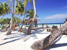 23 best next stop maldives images the maldives traveling rh pinterest com