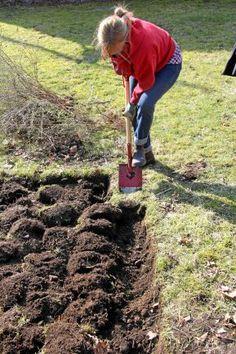 Garden Beds, Garden Plants, Indoor Plants, Bokashi, Gardening Tips, Outdoor Power Equipment, Garden Tools, Mat, Landscape