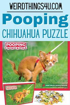 Find the perfect white elephant gifts for this season of gift giving! Get your Pooping Chihuahua Puzzle today! Nerd Humor, Sarcasm Humor, Mom Humor, Best Gag Gifts, Great Pranks, Prank Gifts, Marriage Humor, Christian Humor, Husband Humor