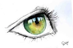 pen and ink with watercolor...reminds me of Avery's eyes