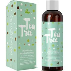 Pure Tea Tree Oil Daily Shampoo Cleanser for Itchy Dry Scalp and Dandruff with Hair Loss Preventing Oils Jojoba and Rosemary For Thicker Hair Gentle Sulfate Free Color Safe Formula for Men and Women Shampoo For Dry Scalp, Dry Itchy Scalp, Organic Shampoo, Moisturizing Shampoo, Natural Shampoo, Tea Tree Oil Shampoo, Apple Cider Vinegar Shampoo, Best Shampoos, Thicker Hair