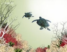 Fine Art Print ... Sea Turtle Tandem ... Two by NikkiTyTomkins, $25.00
