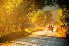 Romania, rural life