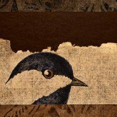 Chickadee Print By Carol Leigh