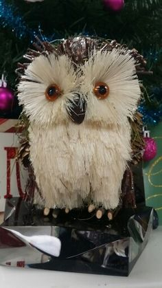Pinecones, needles and wood owl -  Xmas gift from my friend Raquel. Thank you, I love it!!!