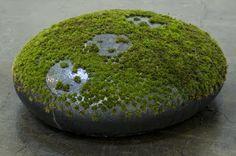 Mineo Mizuno (moss on ceramic)